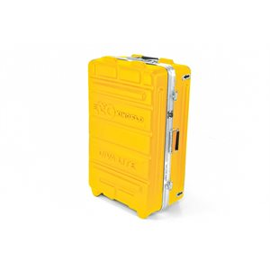 Kino Flo KAS-DL22 Diva-Lite 20 2-Unit Flight Case.